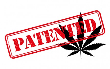 united states marijuana patent