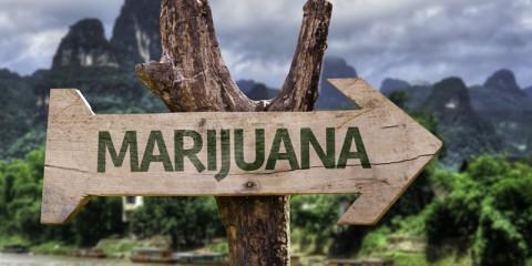 seo tips for marijuana business