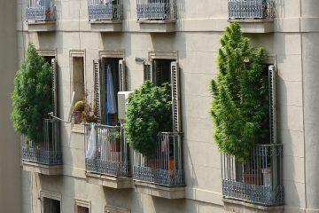 Is cannabis legal in Spain?
