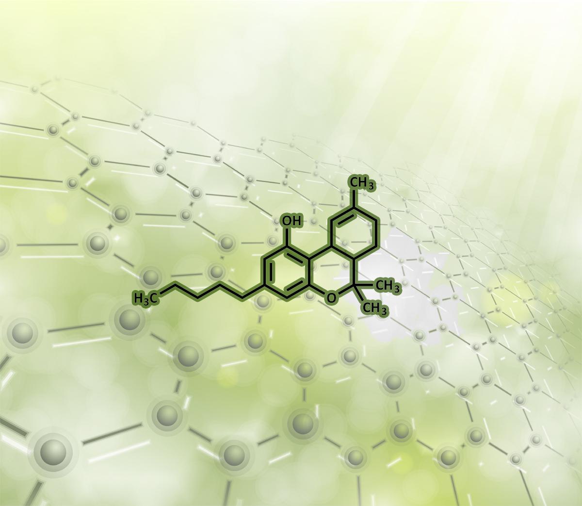Can I patent marijuana genetics